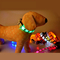 LED USB Rechargeable Dog Collar Flashing Pet Supply for promotion