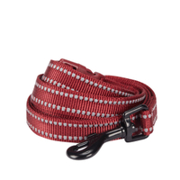 3M Reflective Dog Leash in Marsala