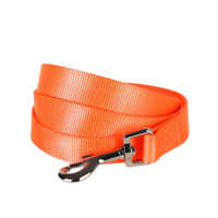 Classic Solid Nylon Dog Leash