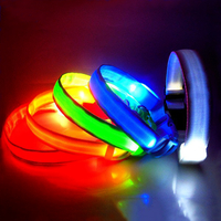 USB Rechargeable Flashing LED Nylon Safety Dog Collar